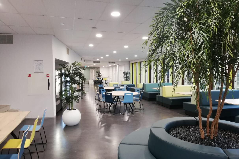 VCL school Den Haag